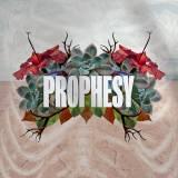 Prophesy (Live)