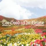 Too Good To Not Believe (Radio)