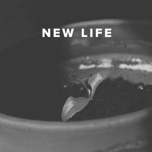 Worship Songs about New Life