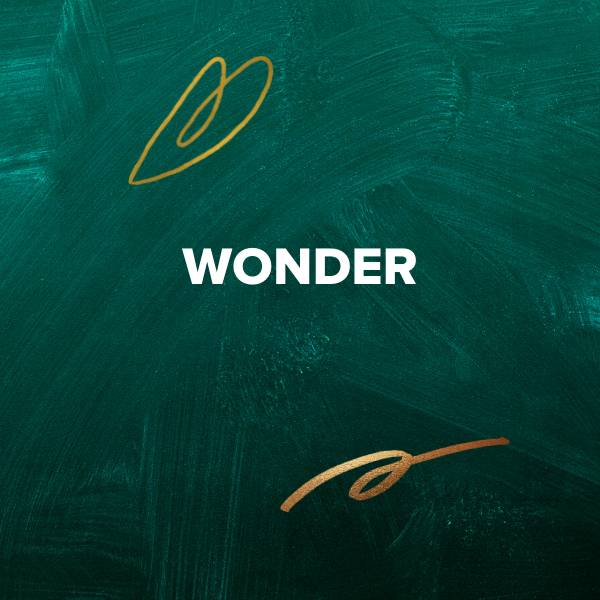Sheet Music, Chords, & Multitracks for Christmas Worship Songs about Wonder